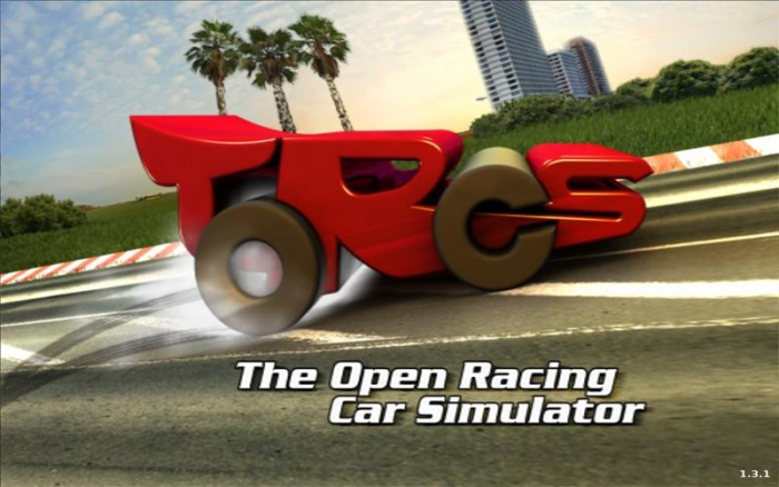 TORCs Car Simulator